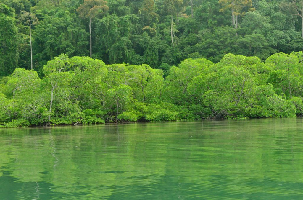 Andamans- Havelock-islands