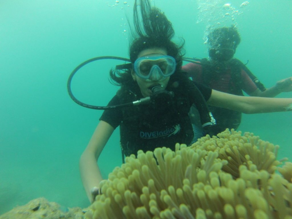 Andamans Havelock snorkeling