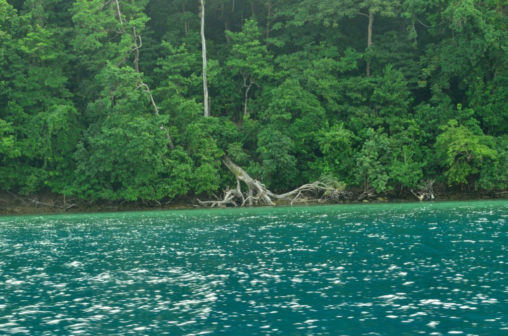 Andaman- Havelock- islands