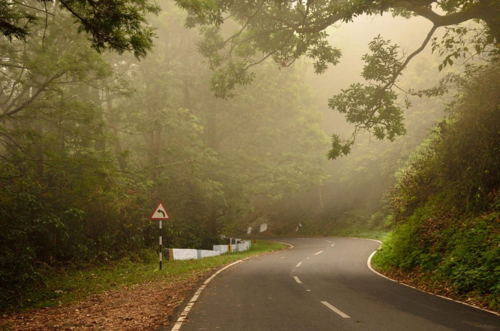 Valparai forests Western Ghats
