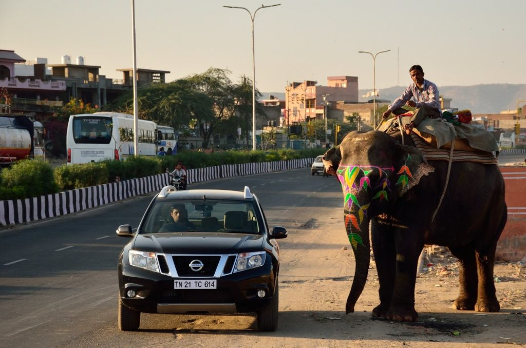Rajasthan, road trip from Jaipur to Jaisalmer